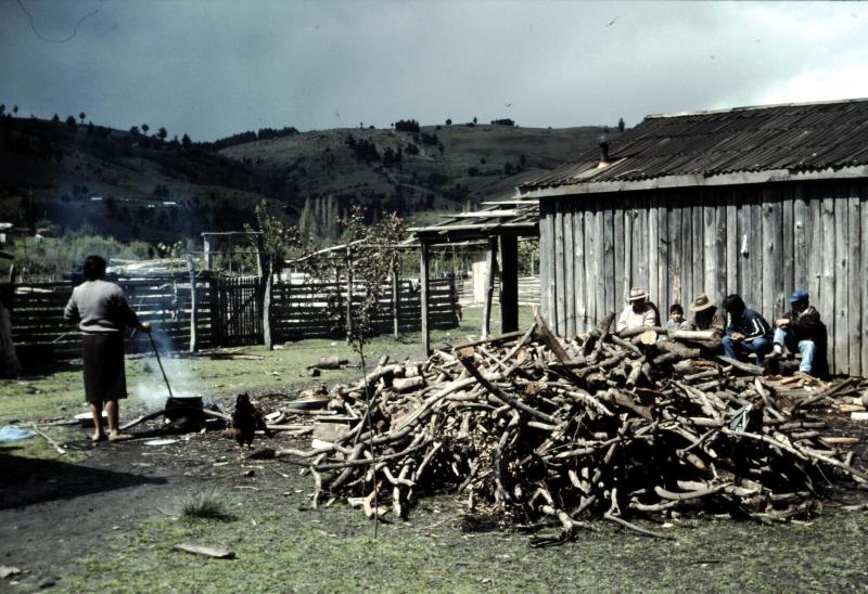 21-terre-mapuche